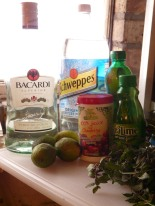 Cranberry Mojito Ingredients