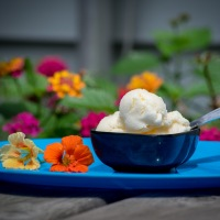 Lemon-Orange Ice Cream