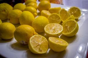 lemon granita-2