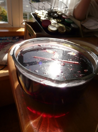 hibiscus punch steeping
