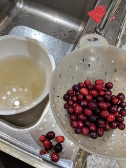 sorting through the berries